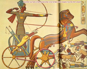 This is what Pharaoh was riding on